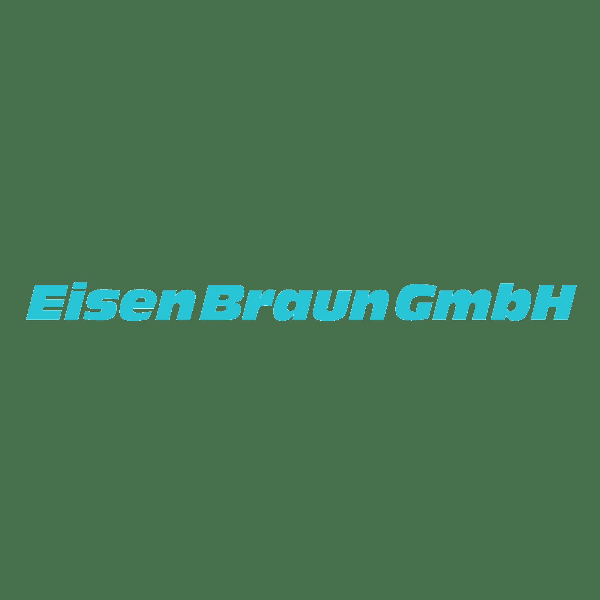 16zu9 eisenBraun GmbH Logo türkis